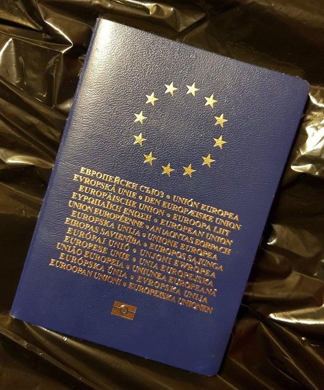 歐盟通行證 委員會向理事會的來文-理事會條例草案,草擬通行證的形式,發給機構的成員和僱員/ * COM / 2007/0849 final * /